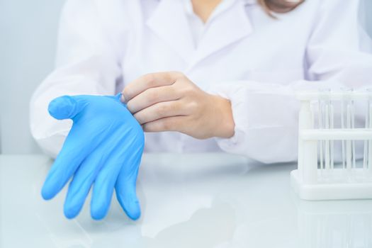 Close up Scientist hands putting in nitrile blue latex gloves in labcoat wearing nitrile gloves, doing experiments in lab