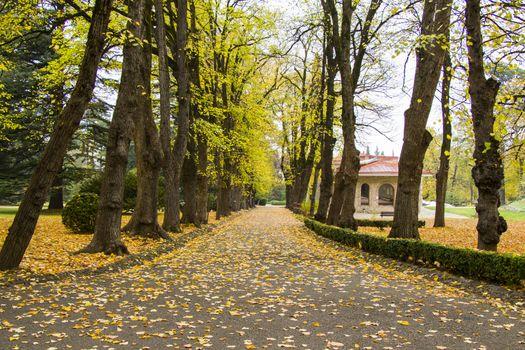 Park and garden in Tsinandali, Kakheti, Georgia. Autumn park landscape.