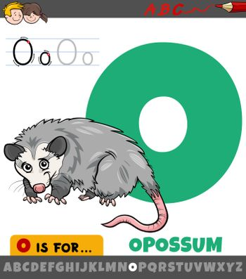 Educational cartoon illustration of letter O from alphabet with opossum animal for children