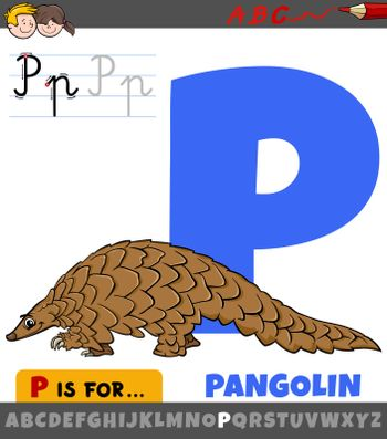 Educational cartoon illustration of letter P from alphabet with pangolin animal for children