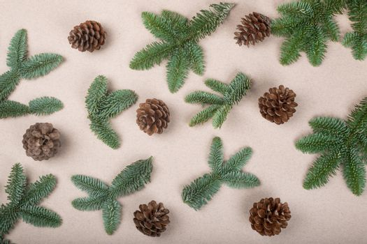 Christmas card light background with noble fir tree branches and pine cones