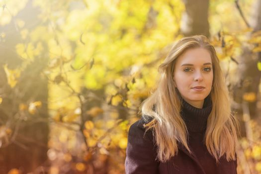 Attractive girl is posing in autumn park. Horizontally.