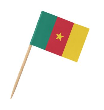 Small paper flag of Cameroon on wooden stick