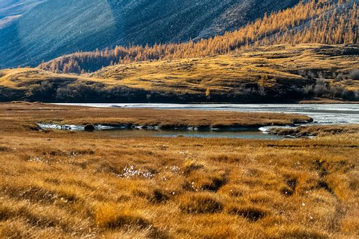 The altai mountains. The landscape of nature on the Altai mountains and in the gorges between the mountains.
