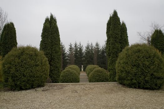 historic park with a path among ornamental evergreen shrubs on a