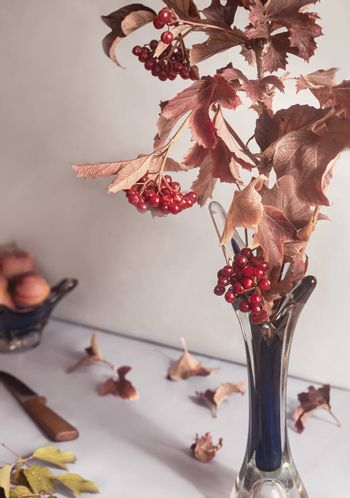 On the table in a glass vase is a branch of viburnum with ripe berries and red autumn leaves. Front view, close-up.