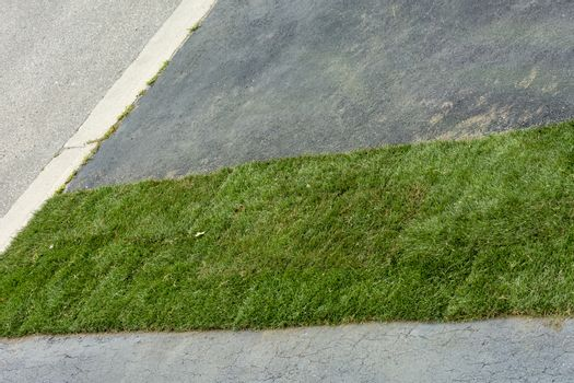 Fragment of the finished plot with new grass