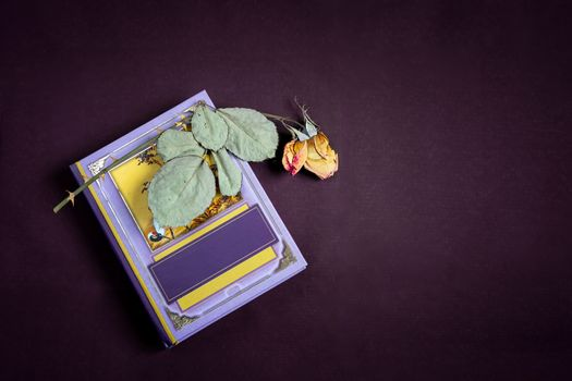 On a small book is a dried rose flower with leaves. Presented on a dark background. Top view with space to copy. Flat lay