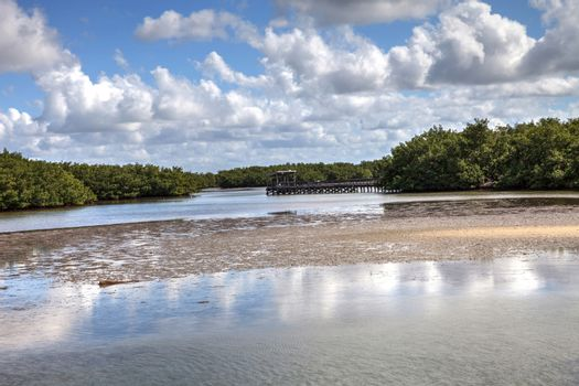 Fishing Pier over Waterway in Lovers Key State Park surrounded b