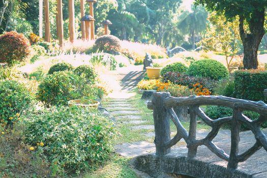 plant decorating in botany garden