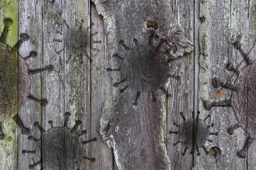 Wooden plank textures with some virus fossil visualization.