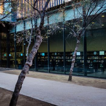 "External view of Biblioteca Sant Antoni. The building is located in the Sant Antoni district in Barcelona. A socially dynamic urban project ""without separation walls"", surrounded by large glass surfaces. Tilted trees and the reading room of the library in background."