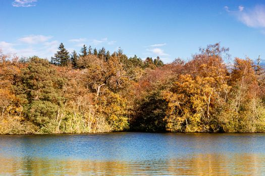 A view of the side of a lake, surrounded by trees, during autumn, with green, yellow and orange leaves, and a partly cloudy sky.