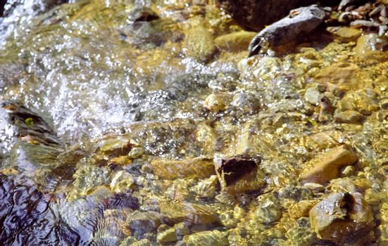 Mountain river. Stones and water of a mountain river. The mountains are said.