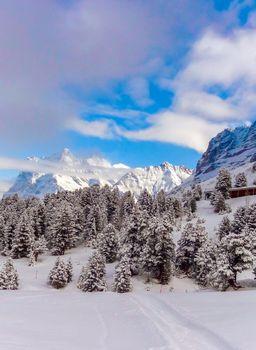 Beautiful winter mountain landscape in Sunny weather with views of Wetterhorn 3692m mountain peak. Grindelwald, Bernese Oberland Switzerland.