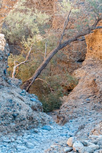 Path leading down into the Sesriem Canyon