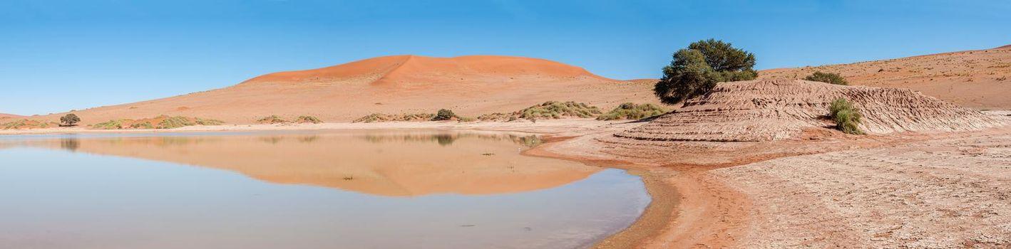 Panorama of Sossusvlei in Namibia full of water