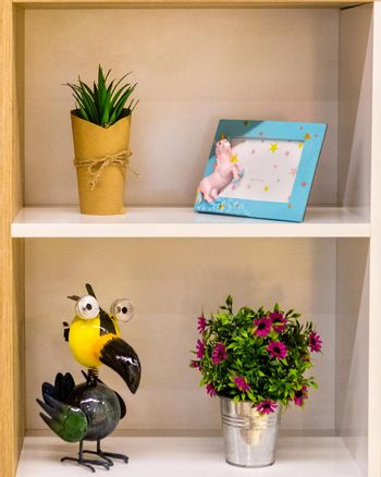 Plant flower photo frame Toucans decoration isolated
