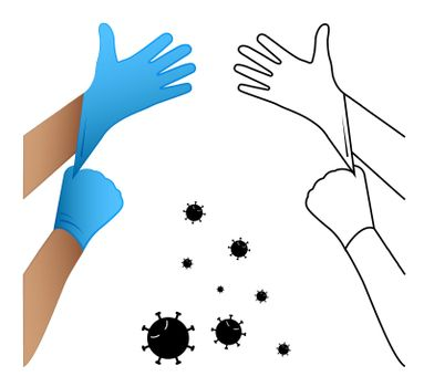 doctor puts latex gloves on his hands. Protecting health from harmful pathogens and substances. Prevention of the spread of disease. Isolated vector