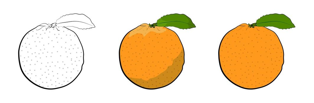 juicy ripe orange with a green leaf in flat and cartoon styles. Summer tropical fruits. Isolated vector on white background