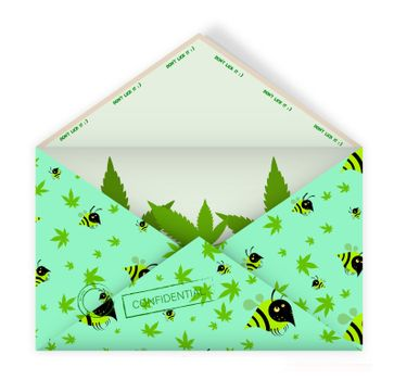 realistic open mail envelope with hemp leaves inside. Pattern of leaves and bees. Unexpected pleasant surprise. Funny gift. Isolated vector on white background