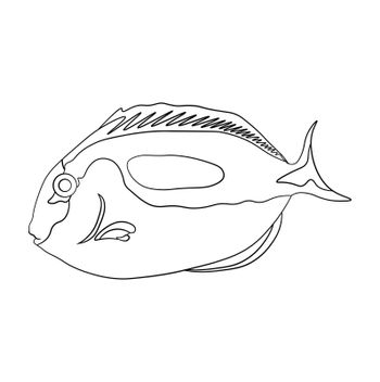 sea fish in linear. Children drawing for coloring. Vector on white