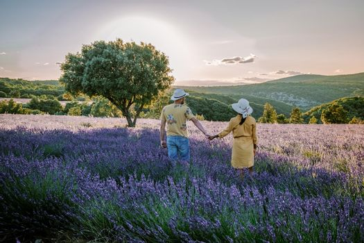 Ardeche lavender fields in the south of France during sunset, Lavender fields in Ardeche in southeast France, couple men and woman watching sunset in lavender fields in the south of France