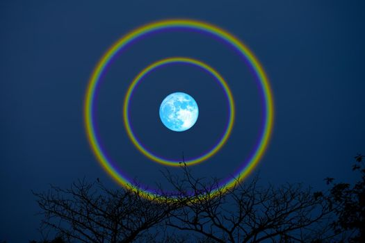 harvest blue moon double halo over top trees in the night sky