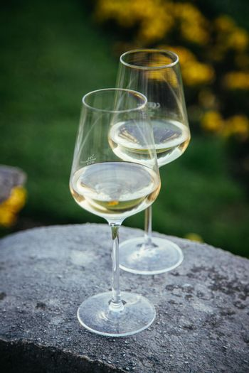 Glass of white wine on a stone wall in the formal garden. Enjoying it in the own garden in the evening sun.