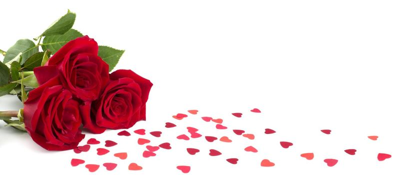 Three red roses and many small paper hearts isolated on white background, love romantic gift for Valentine day