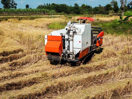 The combine harvester is doing agricultural work in the fields.