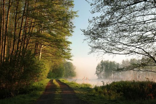 Country road on the edge of the lake during sunrise.