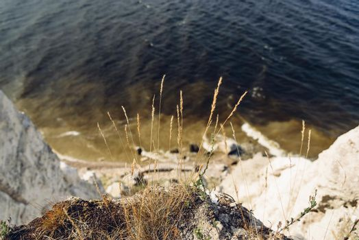 Grass on the edge of cliff