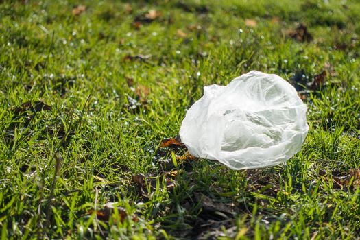 The plastic bag lies on the green grass.