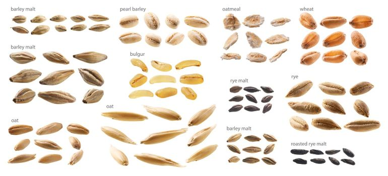 Large set of malt and grains on a white background