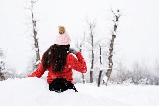 Rear view of brunette woman in wintertime outdoors