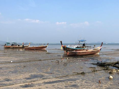Long-tail boats during low tide