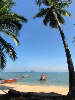 Long-tail boats on Koh Mook island