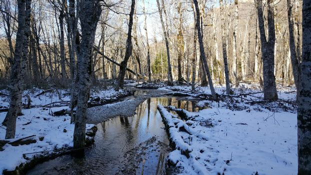 Small river with snow in Biogradska Gora