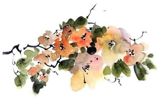 Tree branch in bloom