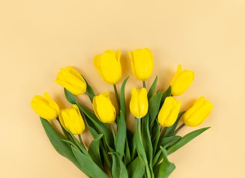 Bouquet of yellow tulips on a beige background.