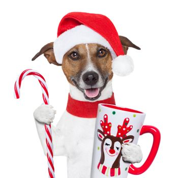 xmas dog with cup and candy cane