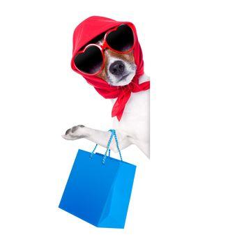 shopaholic shopping diva dog