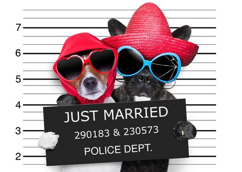 just married mugshot