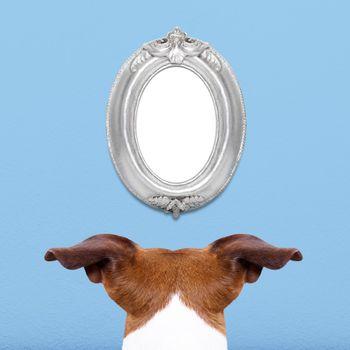 dog watching a frame
