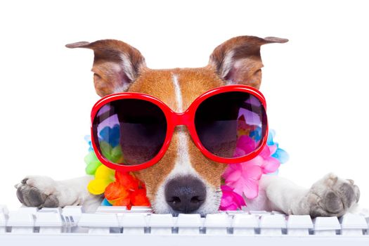 dog booking online