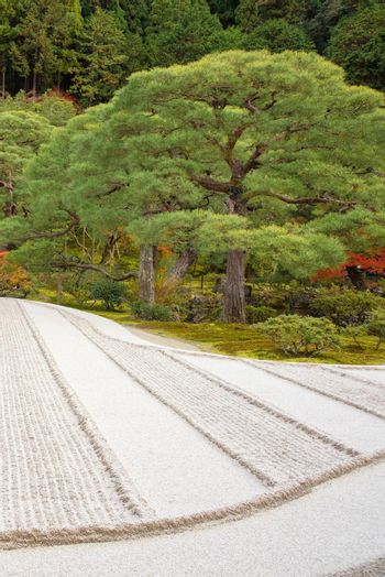 Japanese zen garden meditation stone in lines sand for relaxation balance and harmony spirituality or wellness in Kyoto,Japan