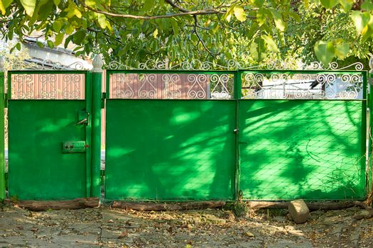 Green metal gates It's a sunny summer day. View from the front.