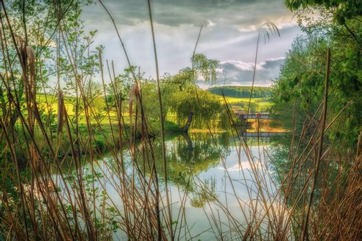 A nicer sunset on a small bridge with aquatic plants surrounding fields in the background