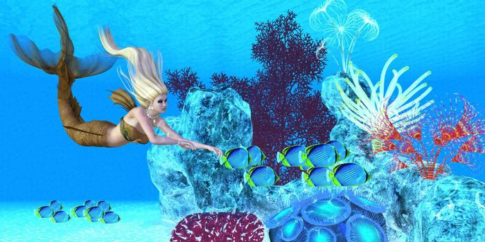 A beautiful golden mermaid swims with a school of Black-backed Butterfly fish over a colorful reef.